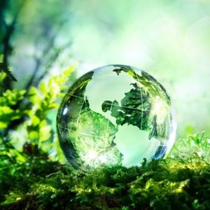 CIRCULAR ECONOMY: My environmental engagement